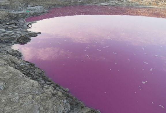 پدیده نادر در ایران ؛حوضچه «نفتلیجه» بنفش شد