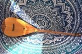 دوتار ایرانی ثبت جهانی شد